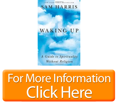 waking up a guide to spirituality without religion pdf